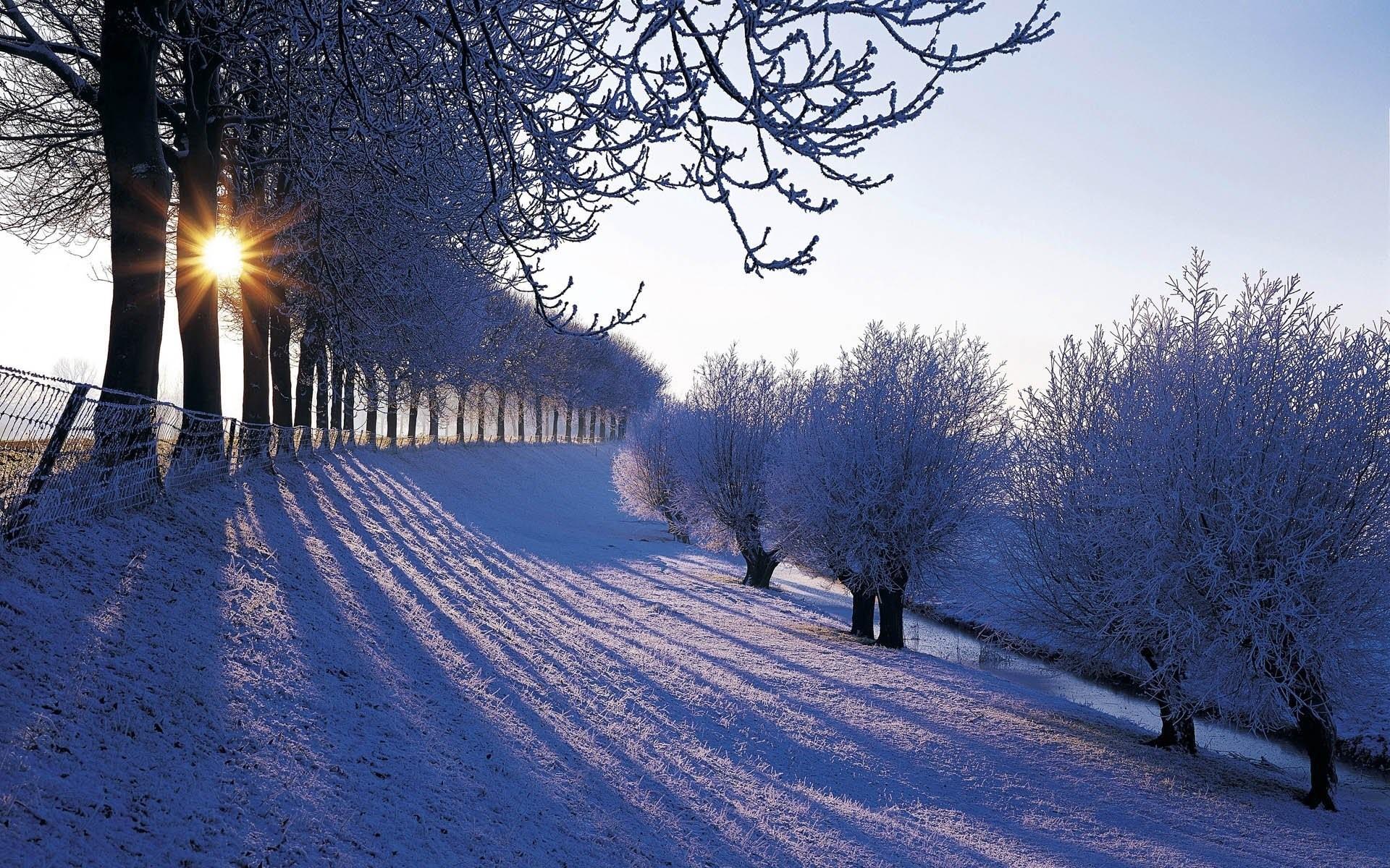 Beautiful Winter Season Free Hd Wallpapers For Desktop