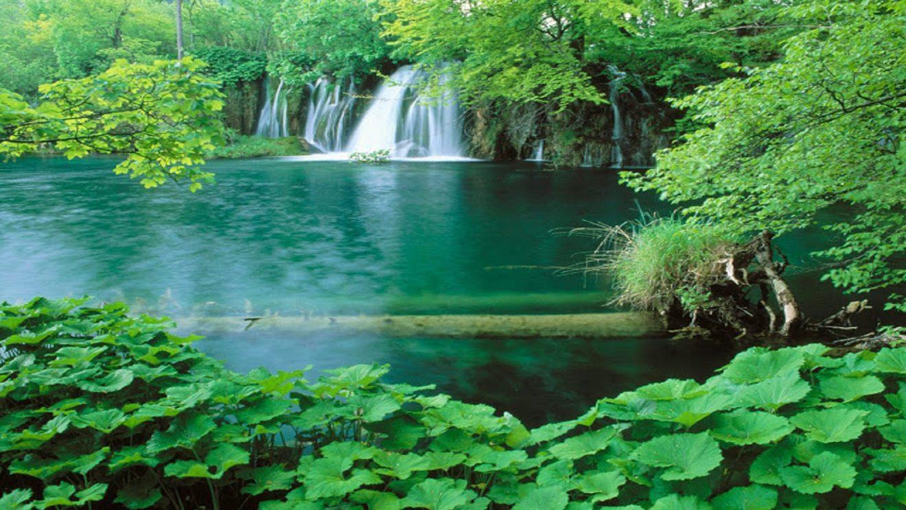 Top 10 Best Nature Scene Hd Wallpaper Free Hd For Desktop Hd Wallpaper