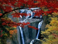 beautiful-waterfalls-hd-wallpapers-free-for-desktop