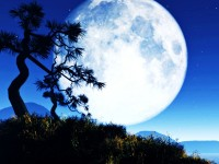 big-moon-free-hd-wallpapers