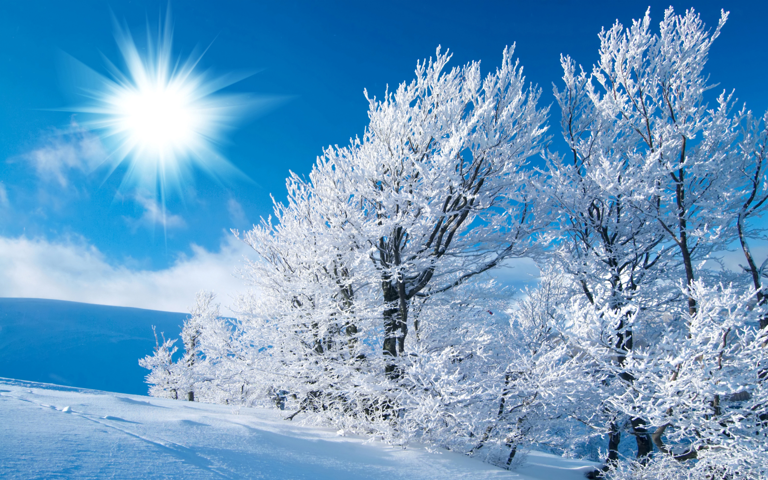 Nice-best-winter-wallpapers-hd-free-for-desktop