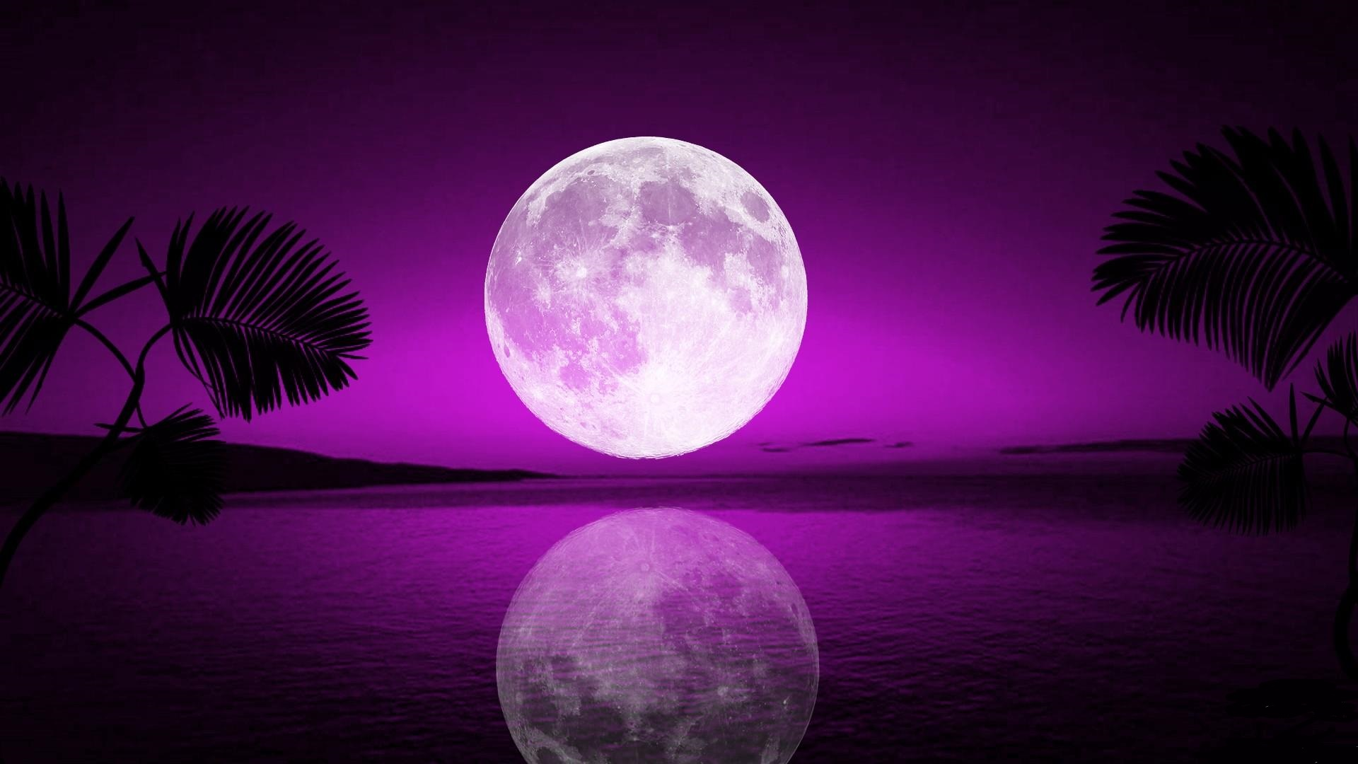 tropical-moon-free-hd-wallpapers-for-desktop