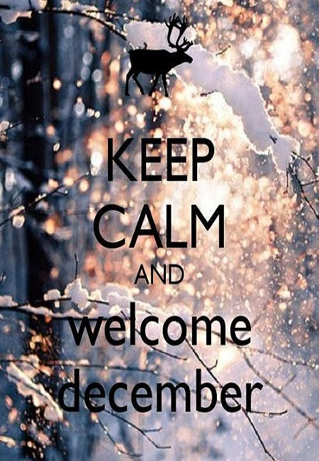welcome keep calm quote hd