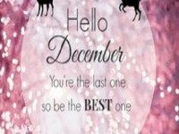 Mobile December quotes free hd wallpaper