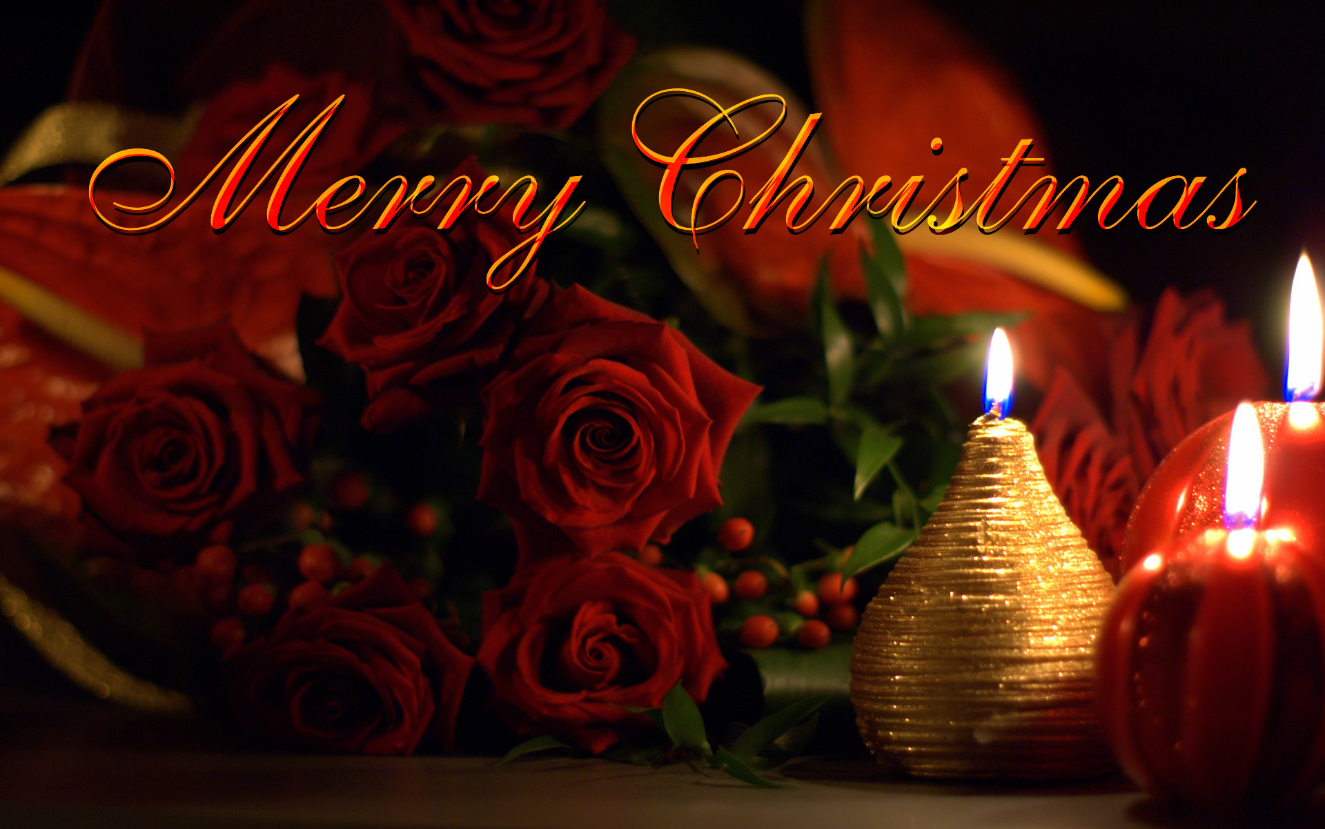 Merry Christmas Ecard Beautiful Roses And Candles Fre Hd Wallappers
