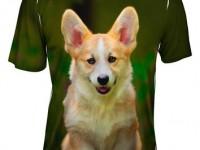 shirt-print-corgi-hd-wallappers-free