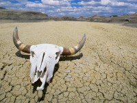 death valley hottest free wallpapers hd