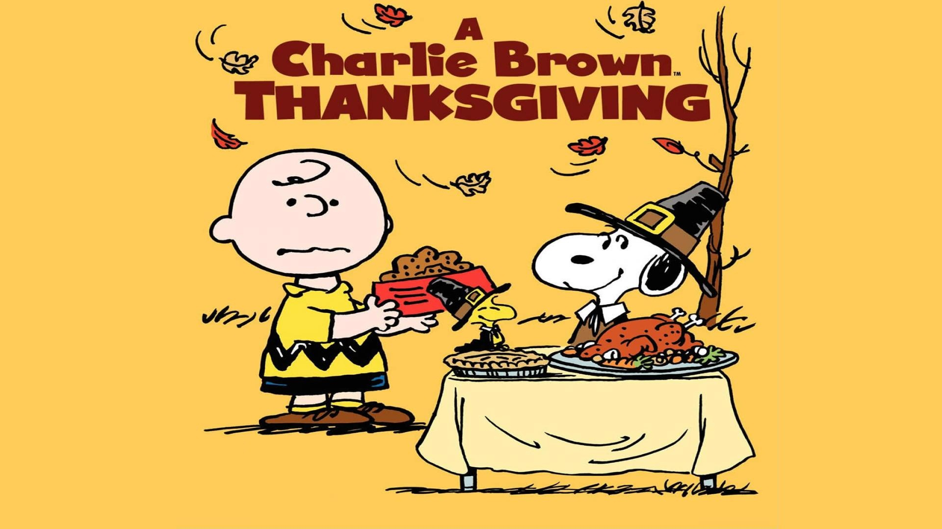 dress - Funny day Thanksgiving pictures video