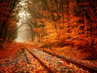 rail track hd free wallpaper for desktop