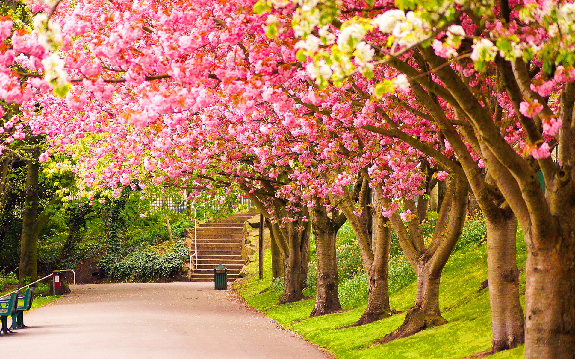 spring hd free wallpapers for tumblr -