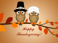 thanksgiving hd free wallpapers funny for desktop