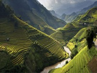 Vietnam hd free Wallpapers in usa