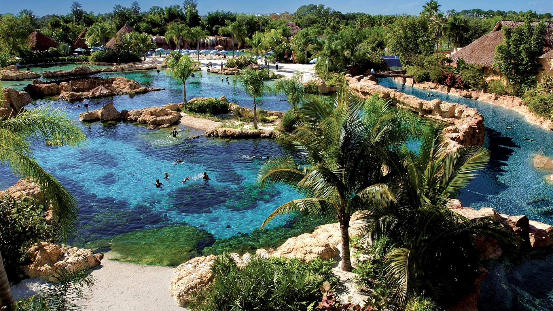 discovery cove theme pin hd free wallpapers