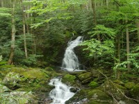 Greate Smoky Mountains National Park hd free wallpapers
