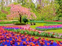 spring season hd free wallpapers for desktop download