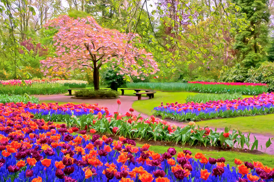 spring season hd free wallpapers for desktop download - Spring Pictures To Download