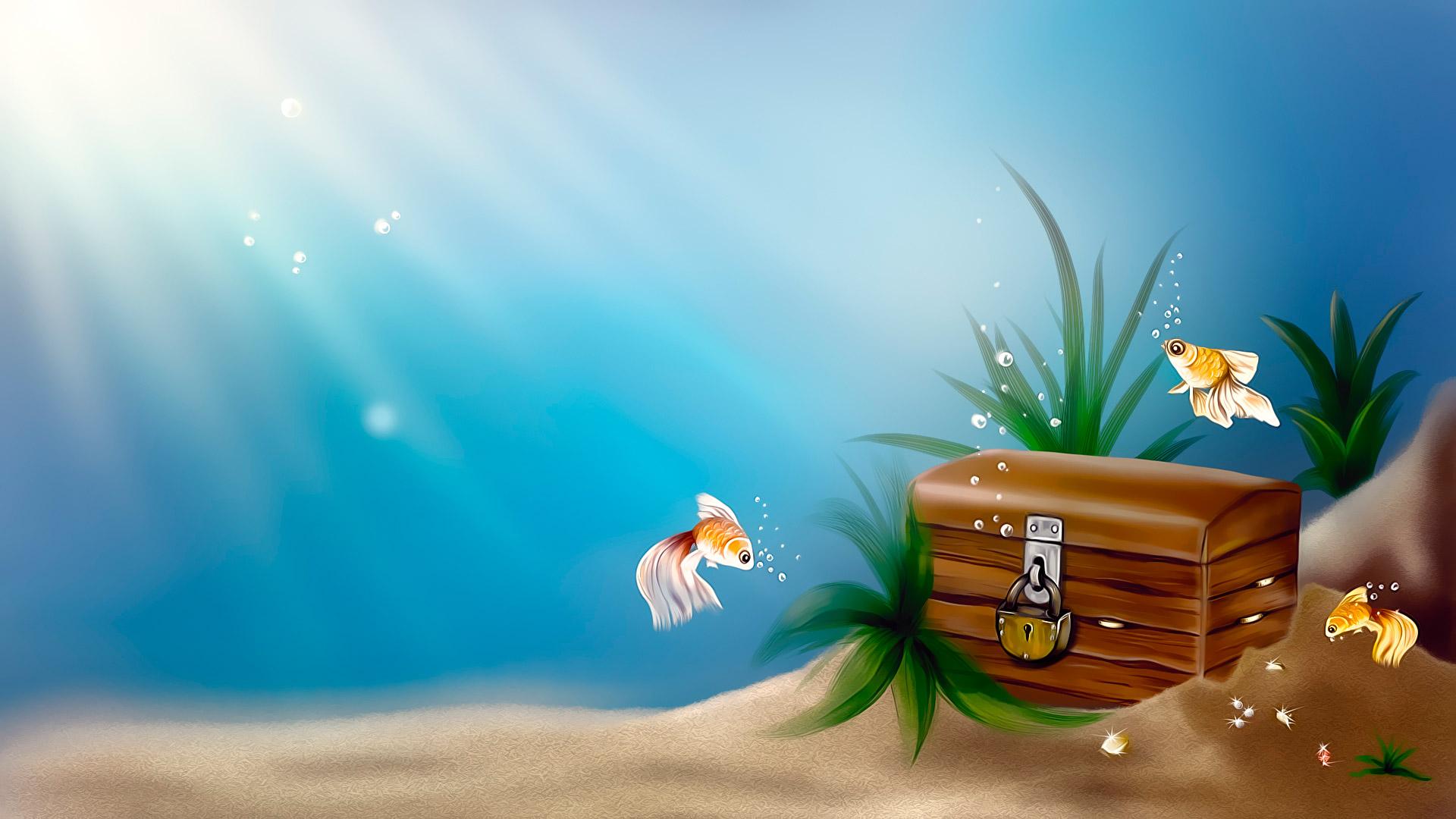 usa underwater treasures hd wallpapers
