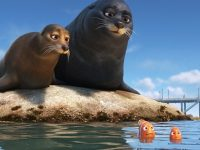 finding dory sea lions wallpaper