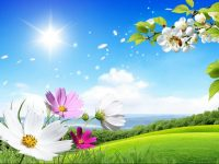 Scenery Wallpapers hd free download