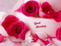 Lovely Good Morning whatsapp wallpapers