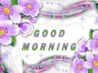 Good Morning Wallpaper Good Morning Images