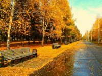 Autumn road tumblr wallpapers hd