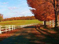Fall landscape wallpaper