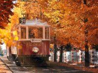 Happy autumn tumblr wallpapers hd