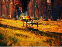 Park bench autumn landscape widescreen wallpaper