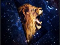 Loin iphone background