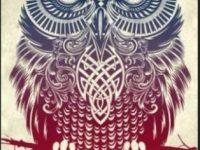 Owl background iphone