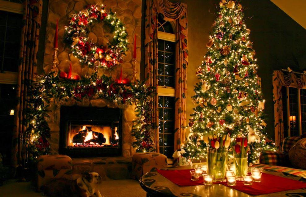 Christmas Flowers Tree wallpapers