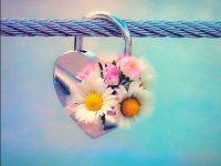 Love lock hd wallpaper