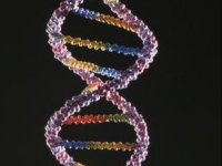 DNA Wallpapers HD For Android iPhone High Resolution Download