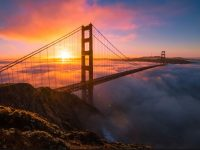 golden gate image for android