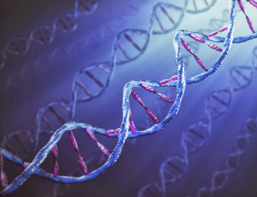 hd dna wallpaper for mobile