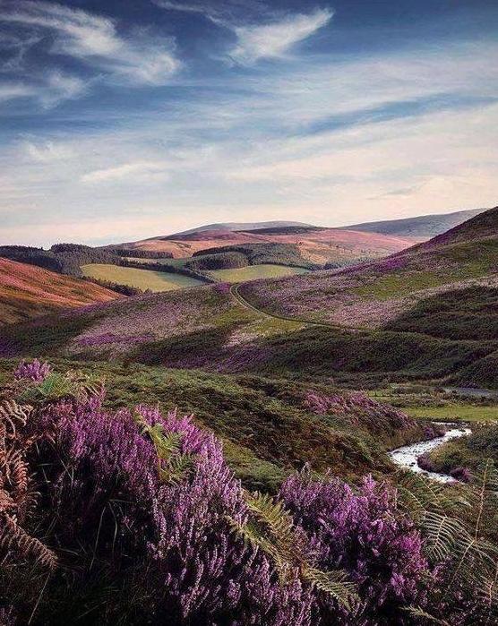 scottish highlands photo wallpaper