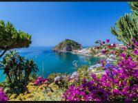 seashore background image