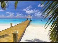 seashore free images