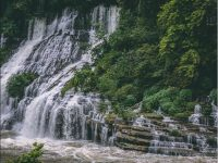 Tropical Forest waterfall wallpaper