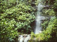 tropical hd waterfall wallpapers
