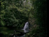 tropical waterfall wallpapers download