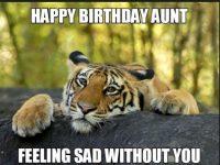 funny aunt birthday meme