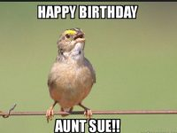 happy birthday auntie images and quotes