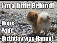 happy belated birthday funny pictures