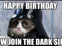black cat birthday meme