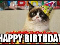 cute cat birthday meme