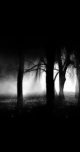 Free HD Black pics