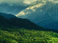 1080x2280 Beautiful Valley Wallpaper