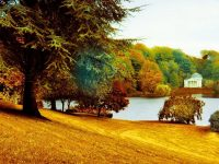 1080x2280 Free Beautiful Park Wallpaper